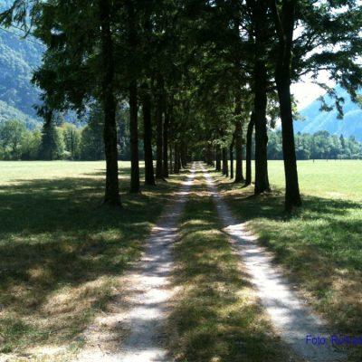 11. Tag: Im Corde vole zum Südrand der Alpen
