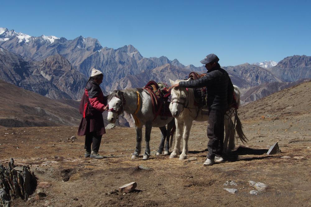 Dolpo Pa mit Pferden